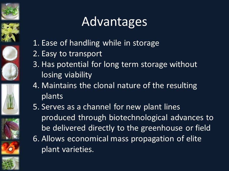 Advantages Ease of handling while in storage Easy to transport