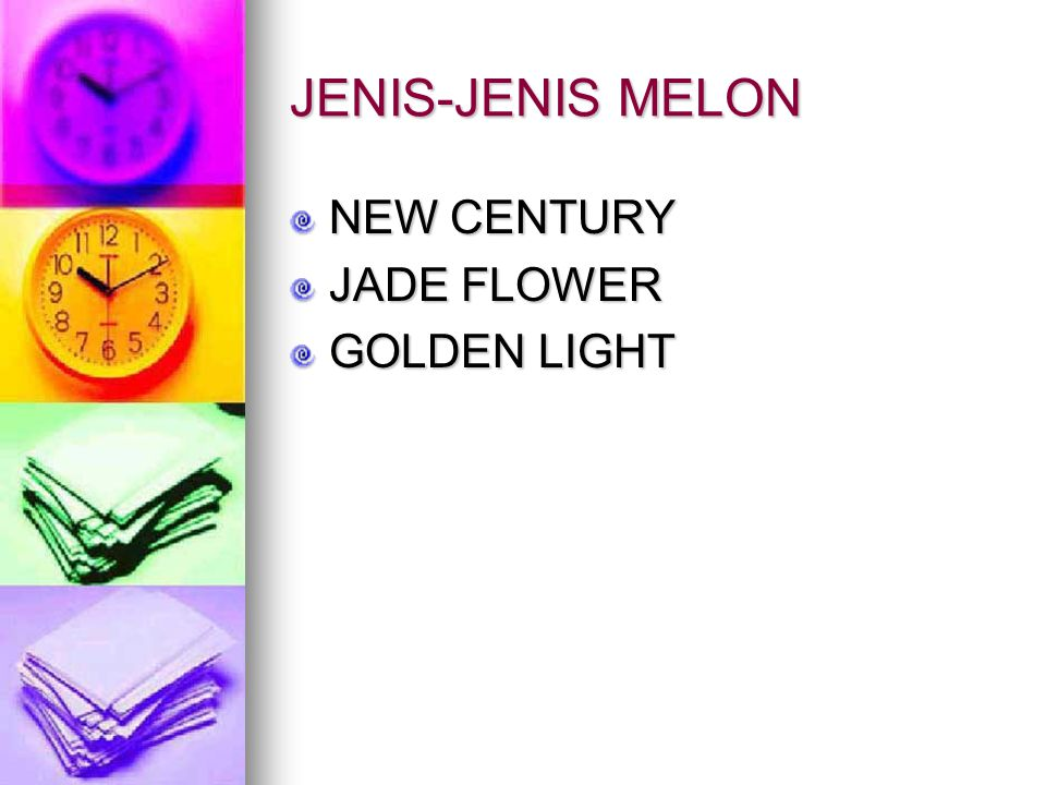 JENIS-JENIS MELON NEW CENTURY JADE FLOWER GOLDEN LIGHT