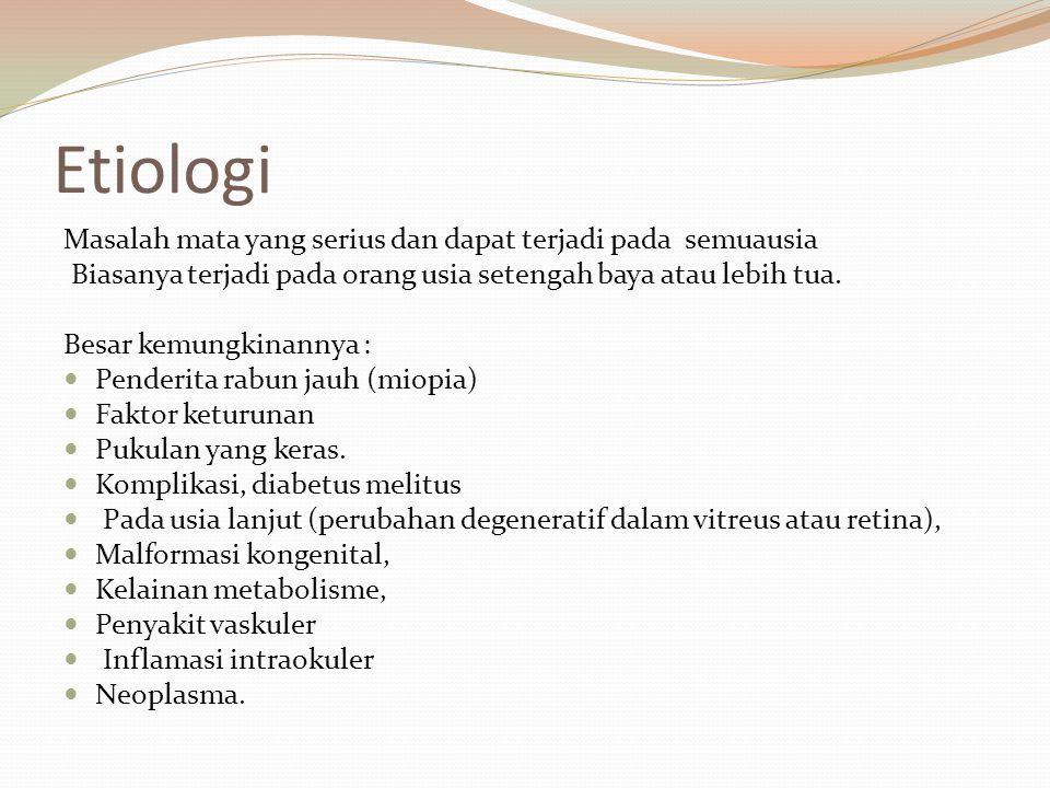 Etiologi Masalah mata yang serius dan dapat terjadi pada semuausia