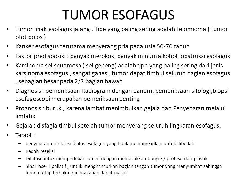 TUMOR ESOFAGUS Tumor jinak esofagus jarang , Tipe yang paling sering adalah Leiomioma ( tumor otot polos )