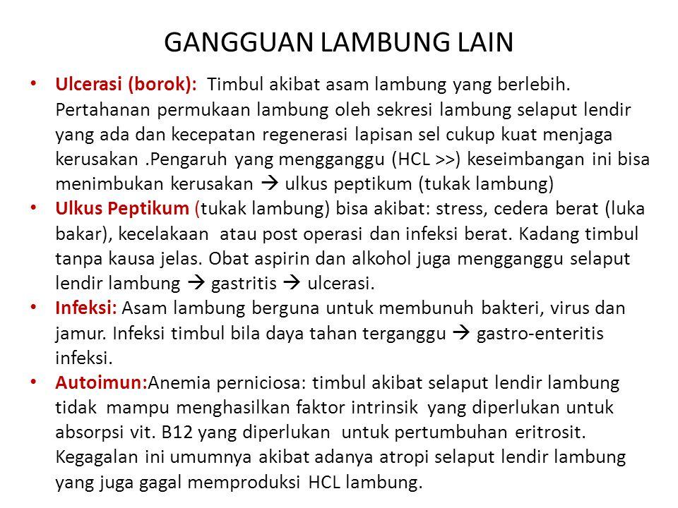 GANGGUAN LAMBUNG LAIN