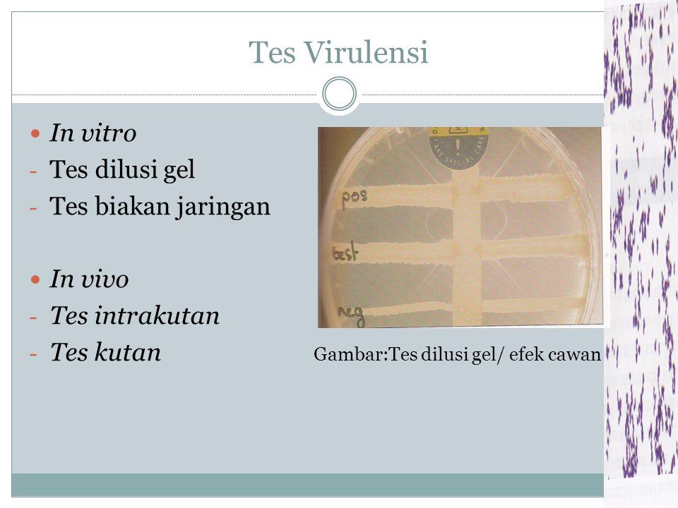 Tes Virulensi In vitro Tes dilusi gel Tes biakan jaringan In vivo