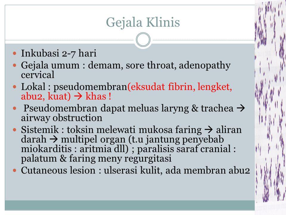Gejala Klinis Inkubasi 2-7 hari