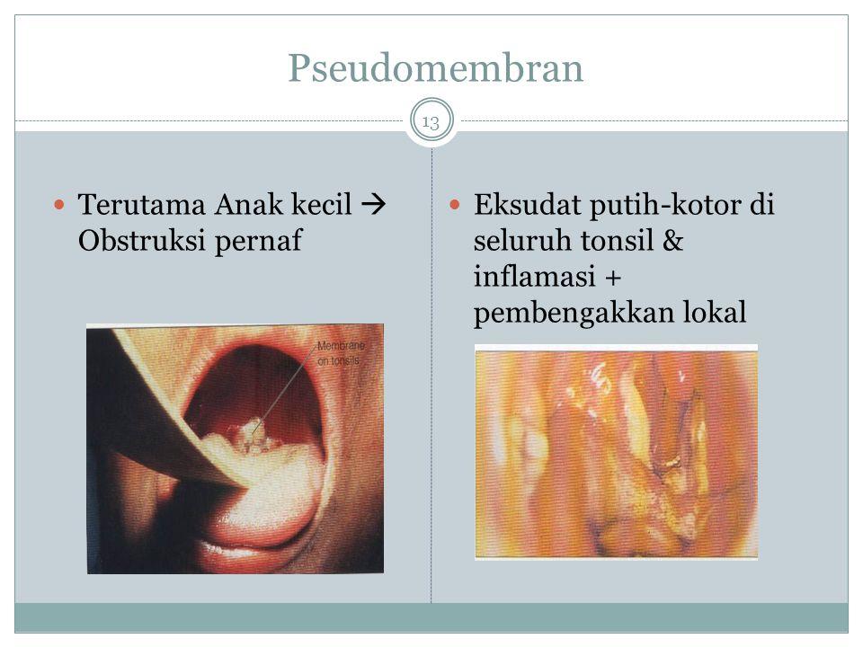 Pseudomembran Terutama Anak kecil  Obstruksi pernaf