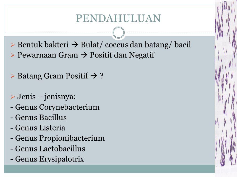 PENDAHULUAN Bentuk bakteri  Bulat/ coccus dan batang/ bacil