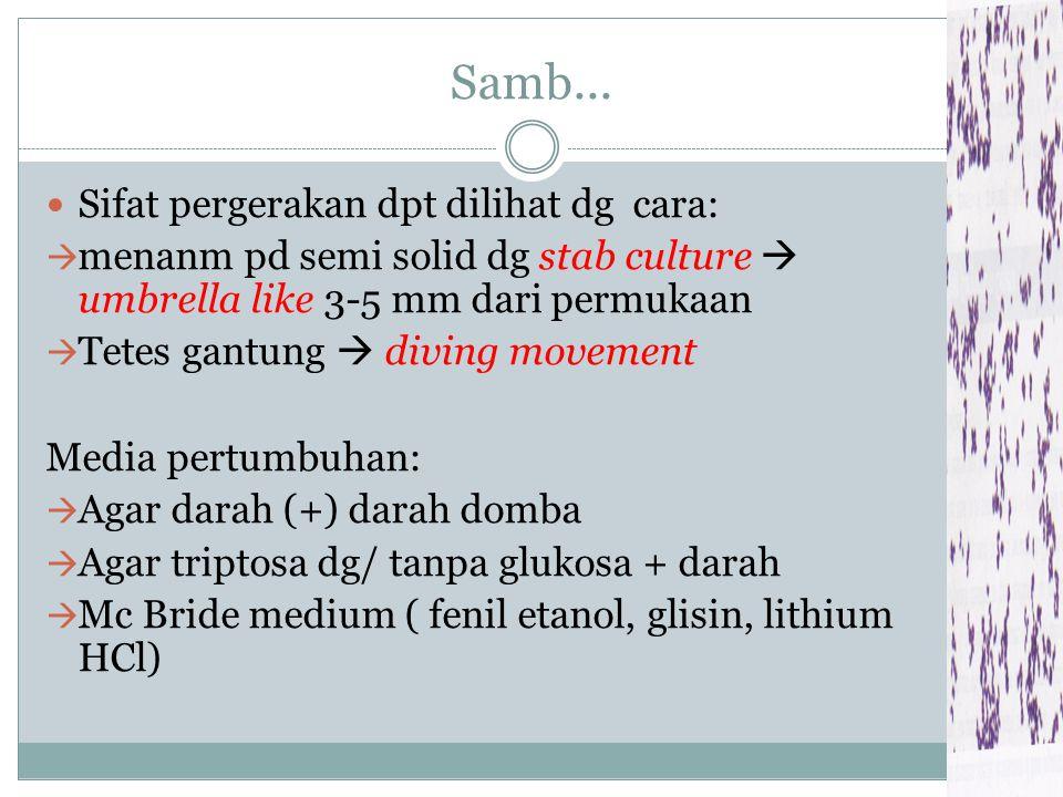 Samb... Sifat pergerakan dpt dilihat dg cara: