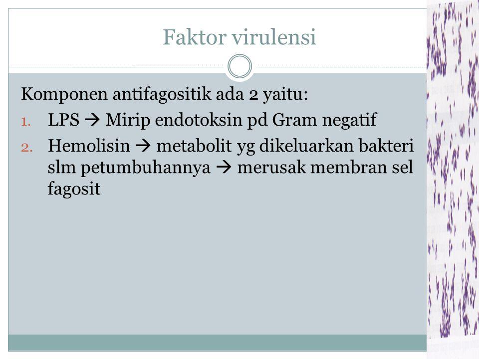 Faktor virulensi Komponen antifagositik ada 2 yaitu: