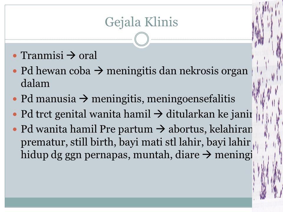 Gejala Klinis Tranmisi  oral