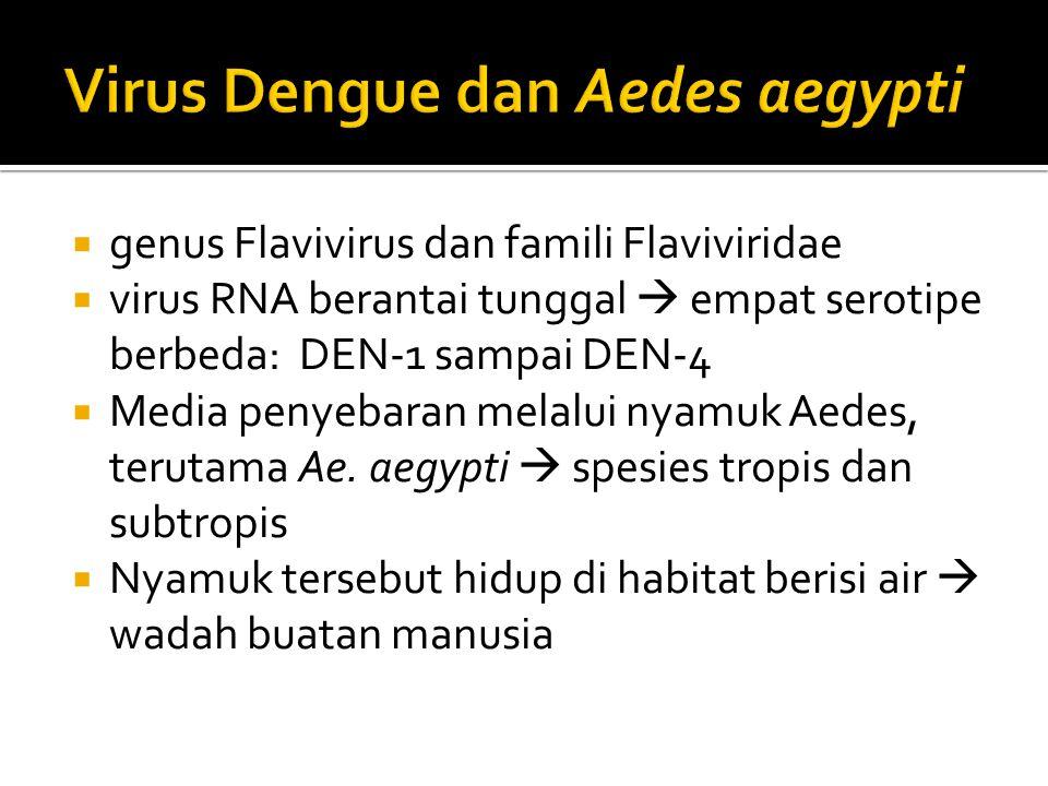 Virus Dengue dan Aedes aegypti