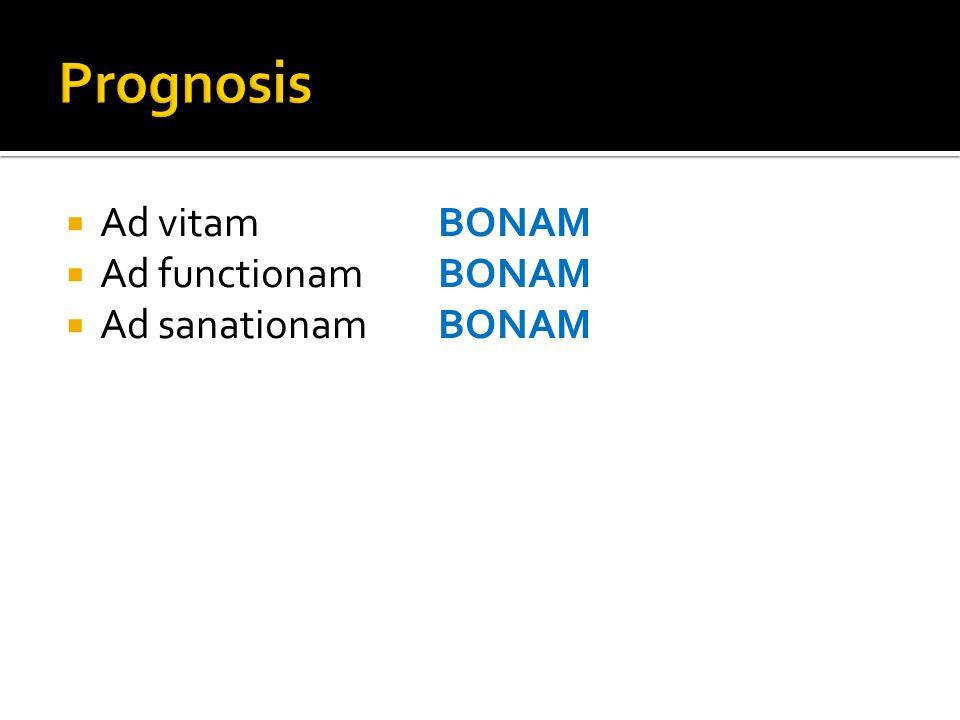 Prognosis Ad vitam BONAM Ad functionam BONAM Ad sanationam BONAM