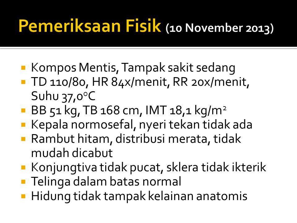 Pemeriksaan Fisik (10 November 2013)
