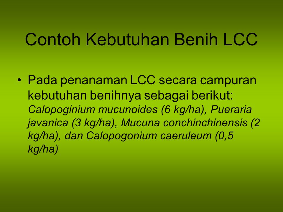 Contoh Kebutuhan Benih LCC