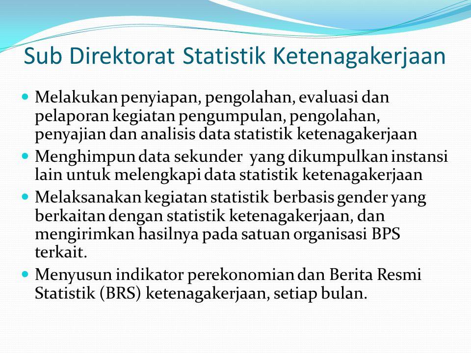 Sub Direktorat Statistik Ketenagakerjaan