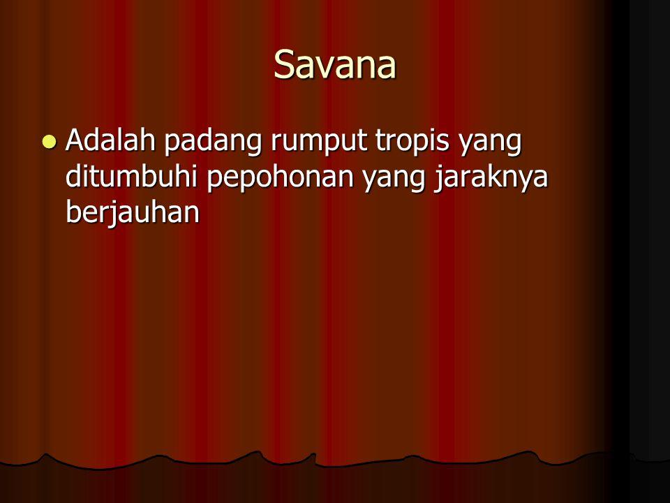 Savana Adalah padang rumput tropis yang ditumbuhi pepohonan yang jaraknya berjauhan