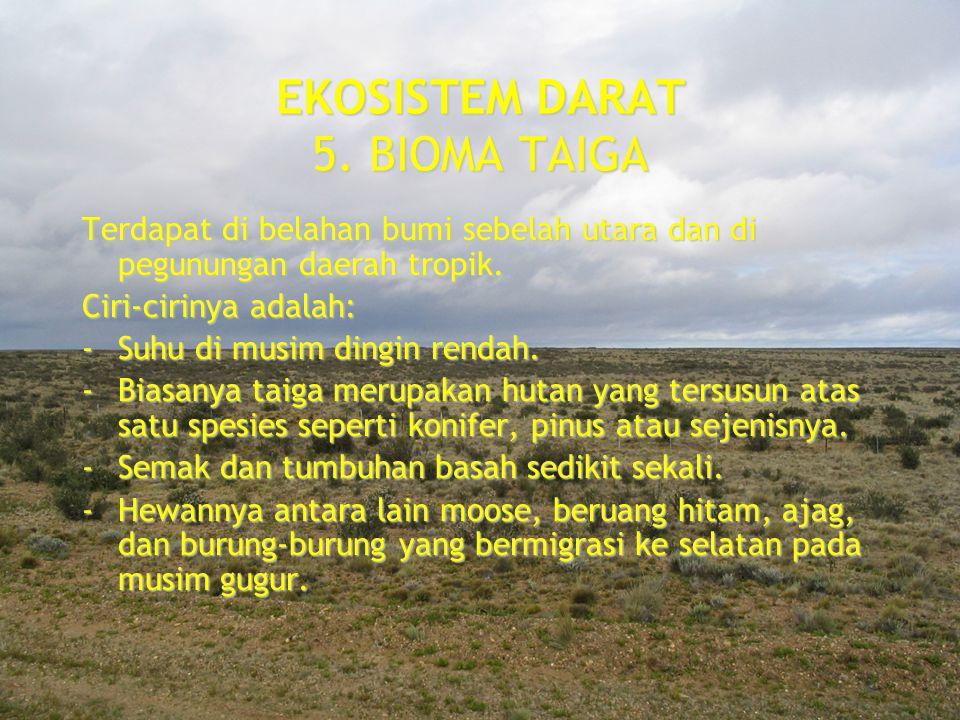 EKOSISTEM DARAT 5. BIOMA TAIGA