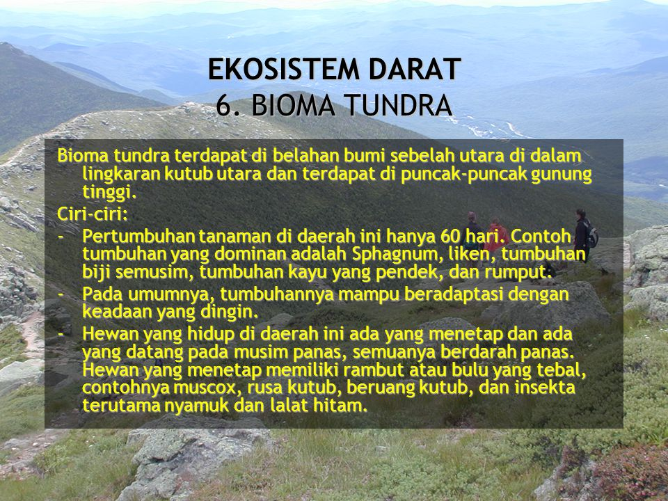 EKOSISTEM DARAT 6. BIOMA TUNDRA