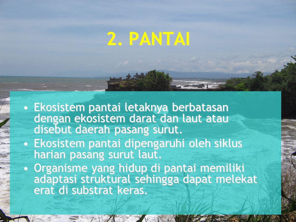 2. PANTAI Ekosistem pantai letaknya berbatasan dengan ekosistem darat dan laut atau disebut daerah pasang surut.