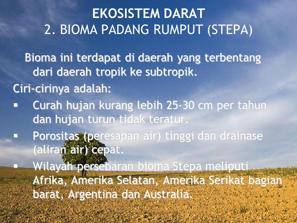 EKOSISTEM DARAT 2. BIOMA PADANG RUMPUT (STEPA)