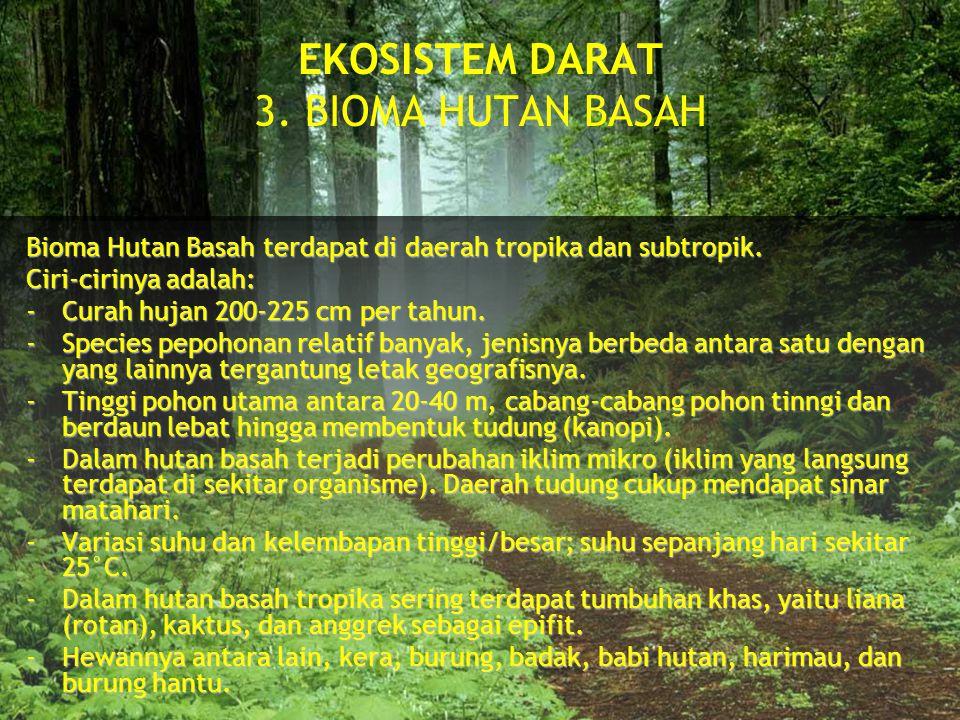 EKOSISTEM DARAT 3. BIOMA HUTAN BASAH
