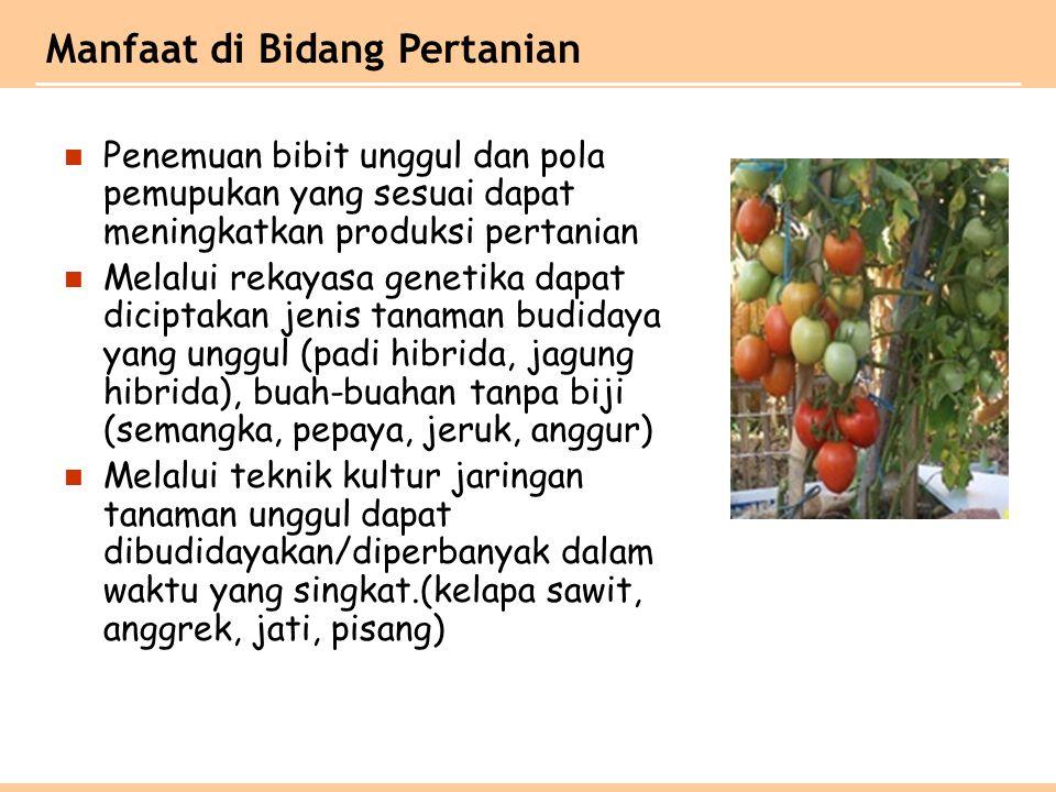 Manfaat di Bidang Pertanian