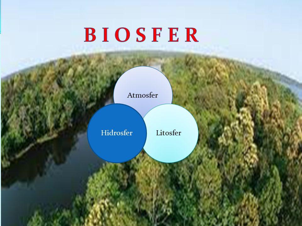 B I O S F E R Atmosfer Hidrosfer Litosfer
