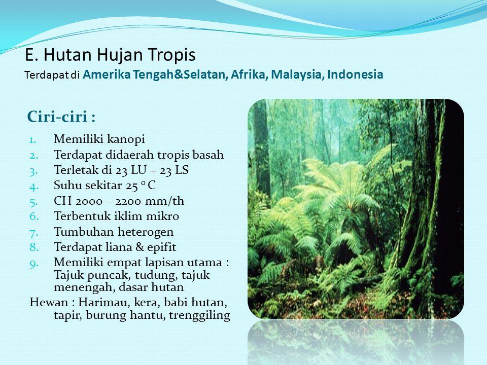 E. Hutan Hujan Tropis Terdapat di Amerika Tengah&Selatan, Afrika, Malaysia, Indonesia