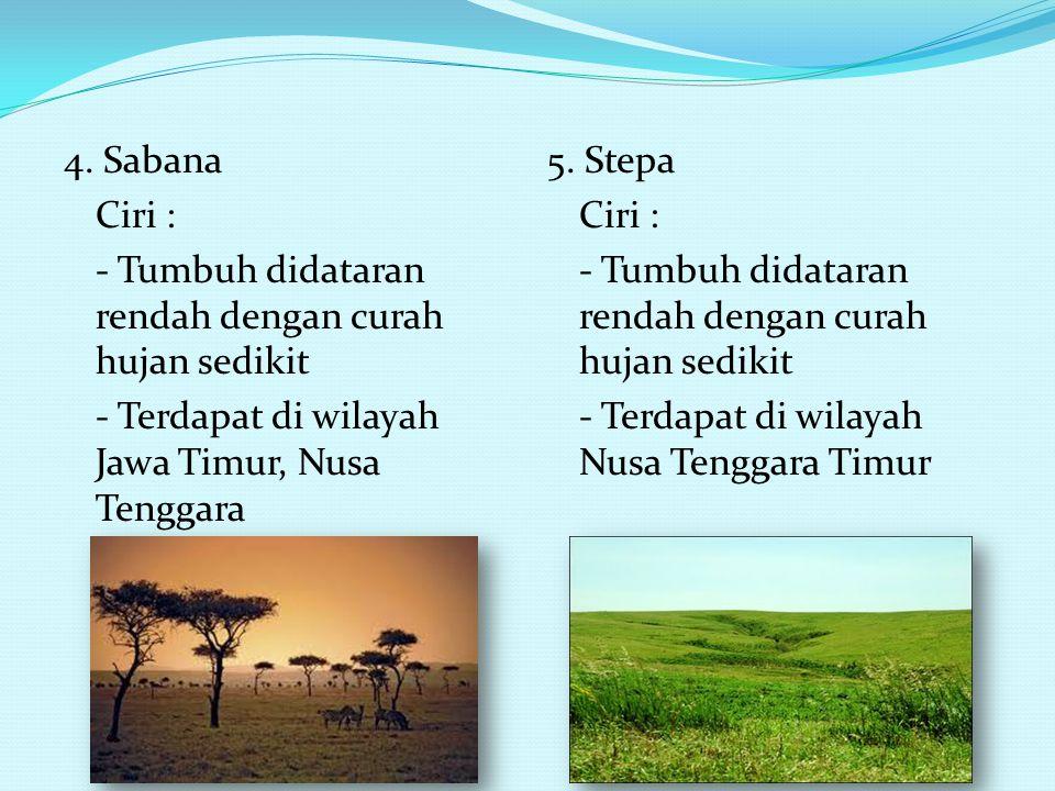 4. Sabana Ciri : - Tumbuh didataran rendah dengan curah hujan sedikit - Terdapat di wilayah Jawa Timur, Nusa Tenggara