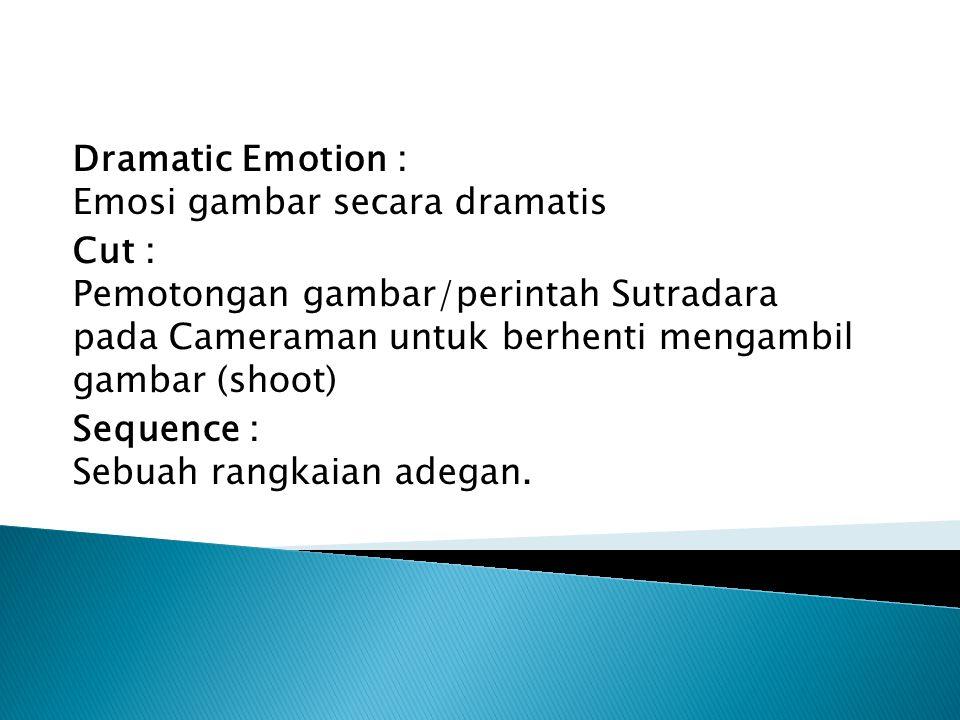 Dramatic Emotion : Emosi gambar secara dramatis