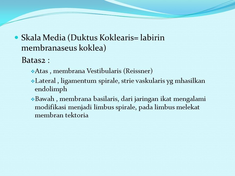 Skala Media (Duktus Koklearis= labirin membranaseus koklea) Batas2 :