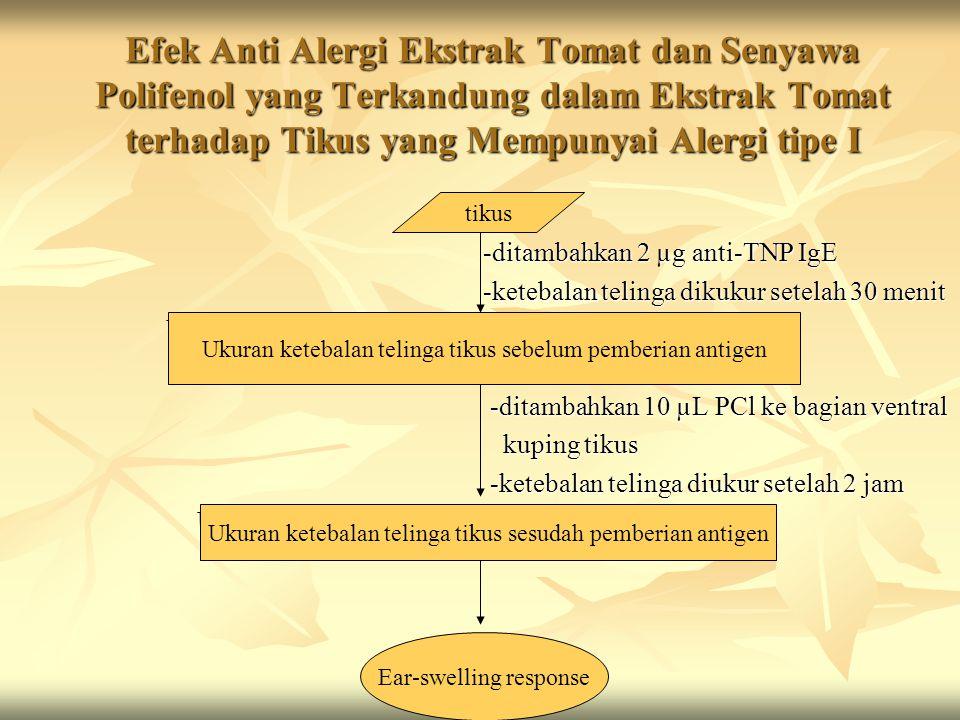 Efek Anti Alergi Ekstrak Tomat dan Senyawa Polifenol yang Terkandung dalam Ekstrak Tomat terhadap Tikus yang Mempunyai Alergi tipe I