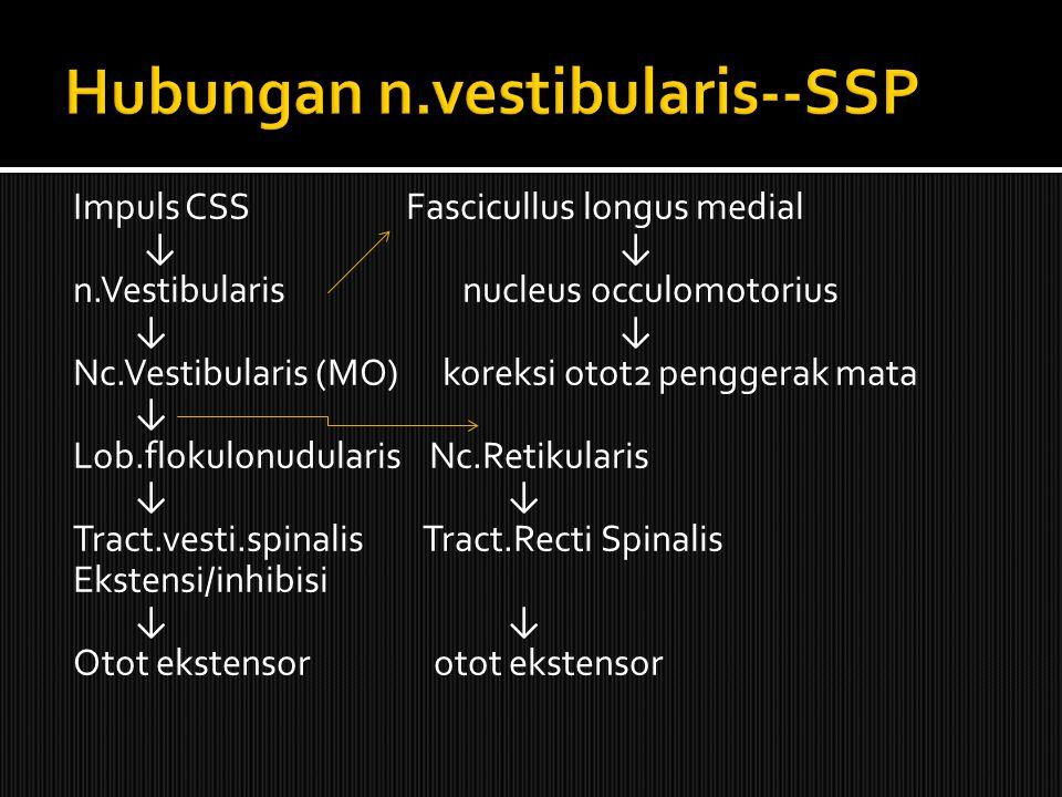 Hubungan n.vestibularis--SSP