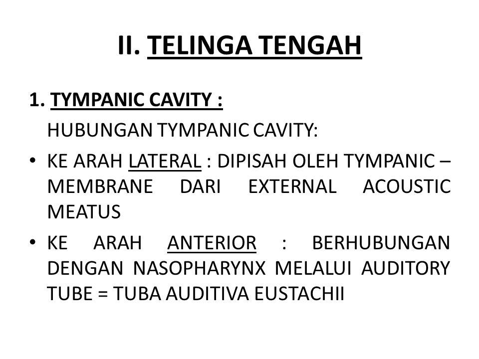II. TELINGA TENGAH 1. TYMPANIC CAVITY : HUBUNGAN TYMPANIC CAVITY: