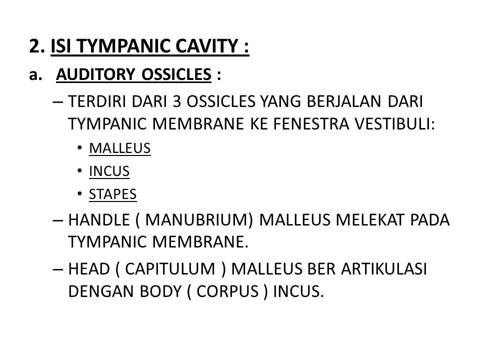2. ISI TYMPANIC CAVITY : AUDITORY OSSICLES :