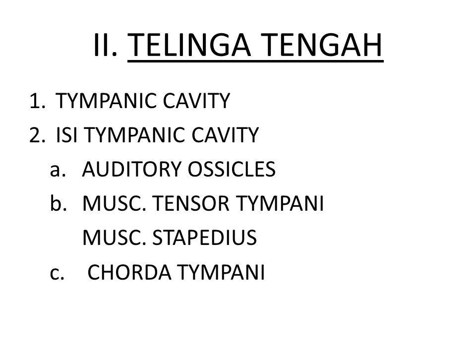 II. TELINGA TENGAH TYMPANIC CAVITY ISI TYMPANIC CAVITY