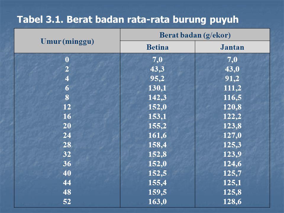 Tabel 3.1. Berat badan rata-rata burung puyuh