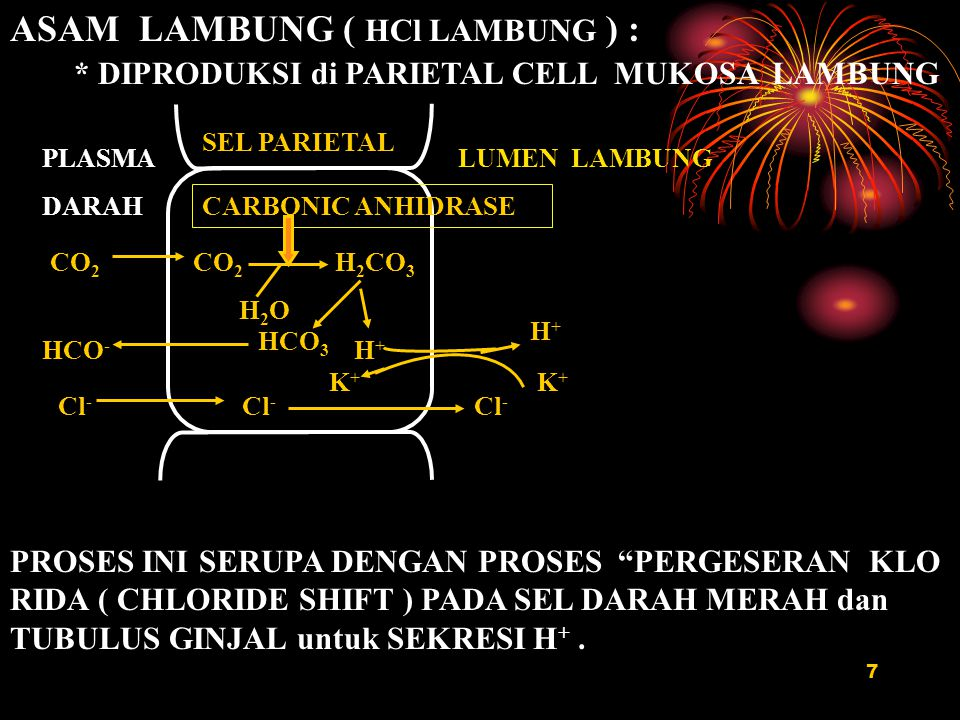 ASAM LAMBUNG ( HCl LAMBUNG ) :
