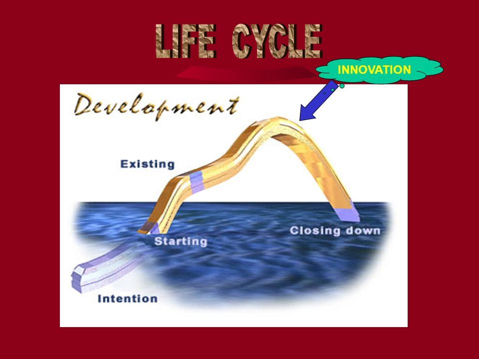 LIFE CYCLE INNOVATION