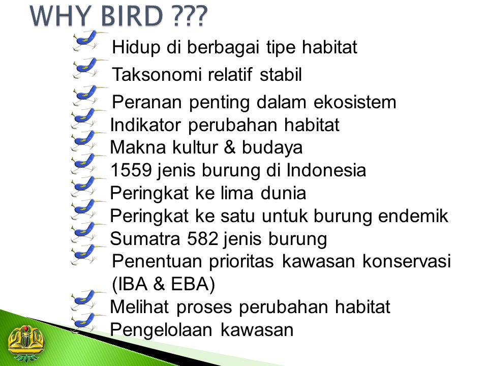 WHY BIRD Hidup di berbagai tipe habitat Taksonomi relatif stabil