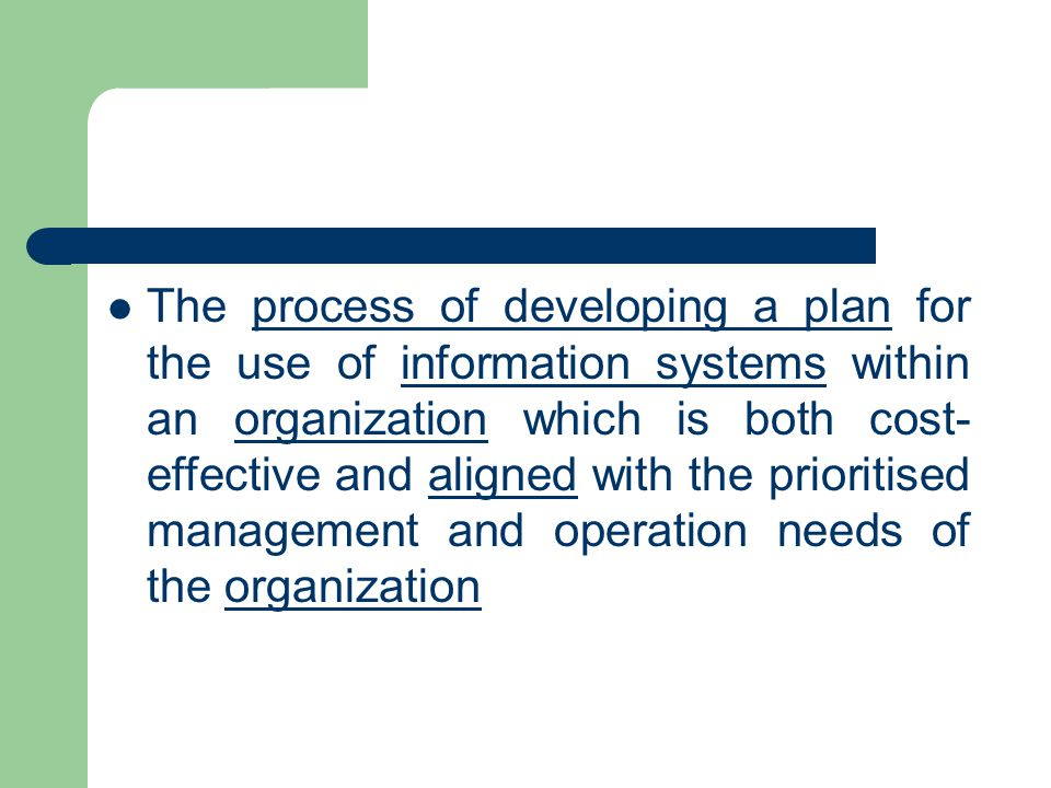 The process of developing a plan for the use of information systems within an organization which is both cost-effective and aligned with the prioritised management and operation needs of the organization