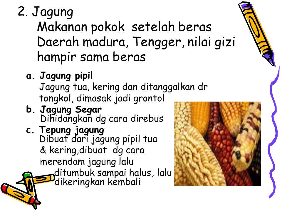 2. Jagung. Makanan pokok setelah beras