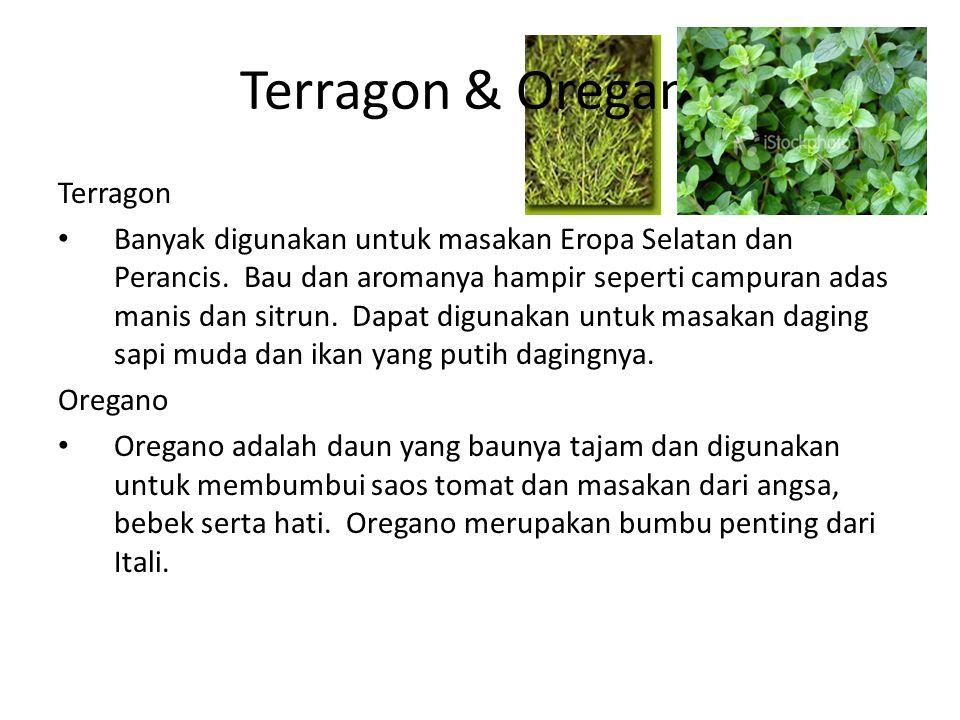Terragon & Oregano Terragon