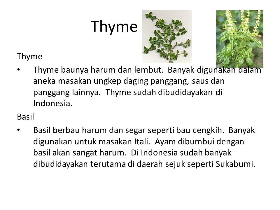 Thyme & Basil Thyme.