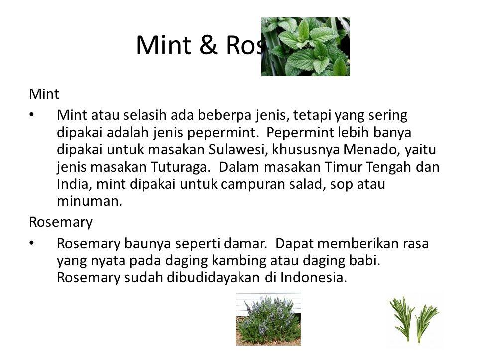 Mint & Rosemary Mint.