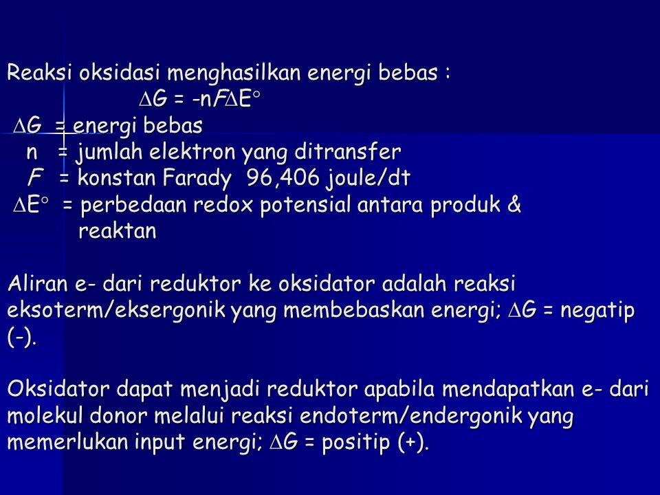 Reaksi oksidasi menghasilkan energi bebas :