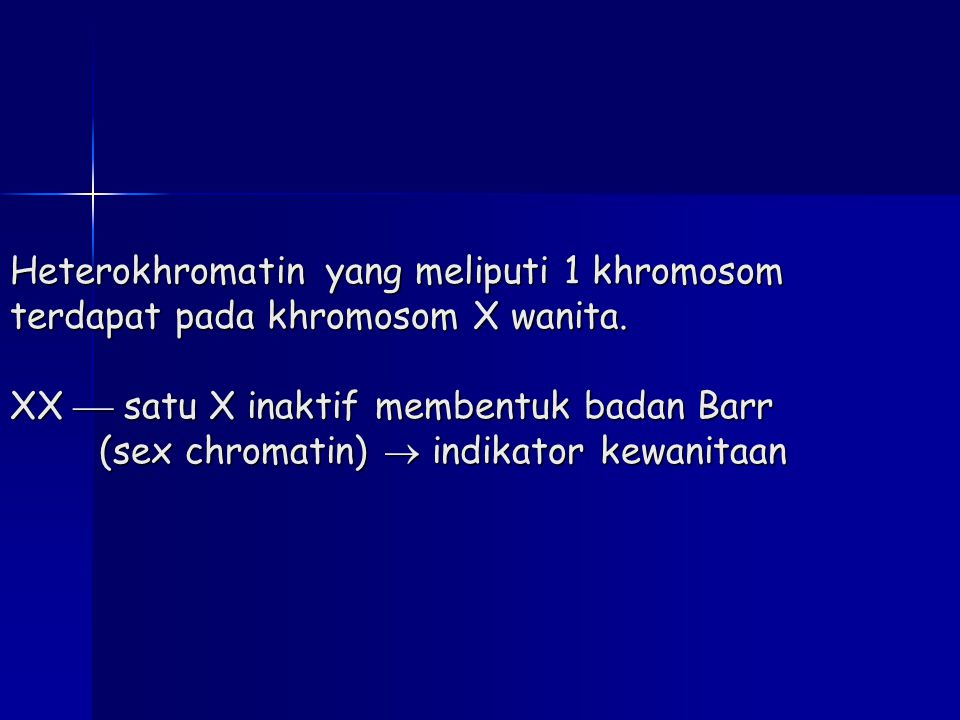 Heterokhromatin yang meliputi 1 khromosom terdapat pada khromosom X wanita.
