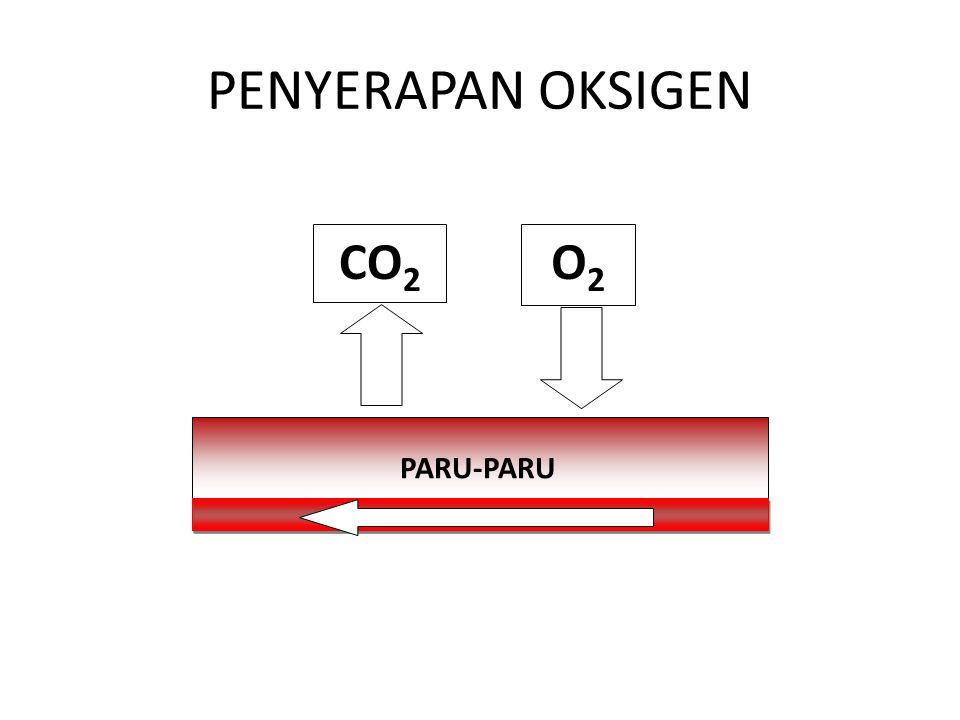 PENYERAPAN OKSIGEN O2 CO2 PARU-PARU