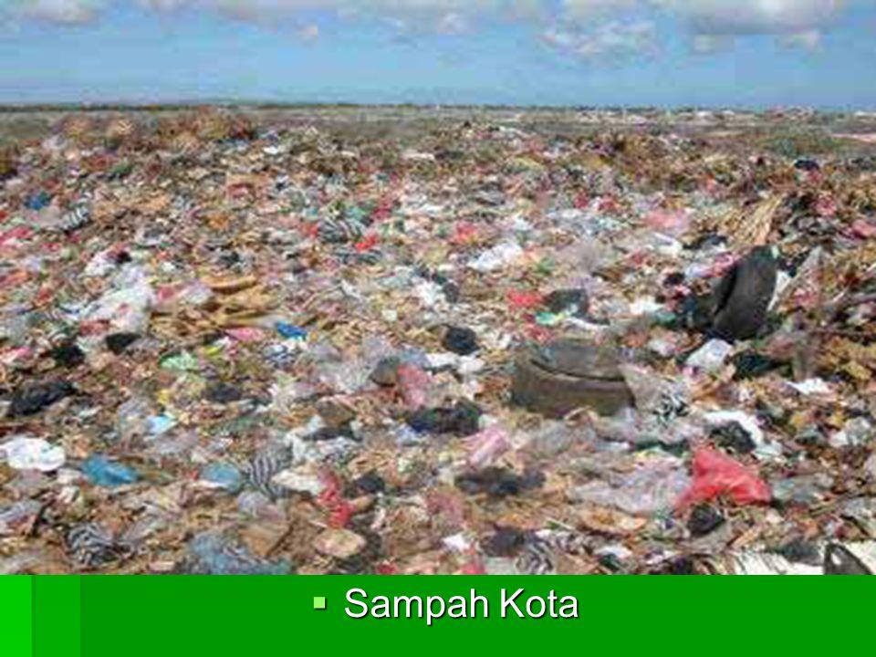 Sampah Kota