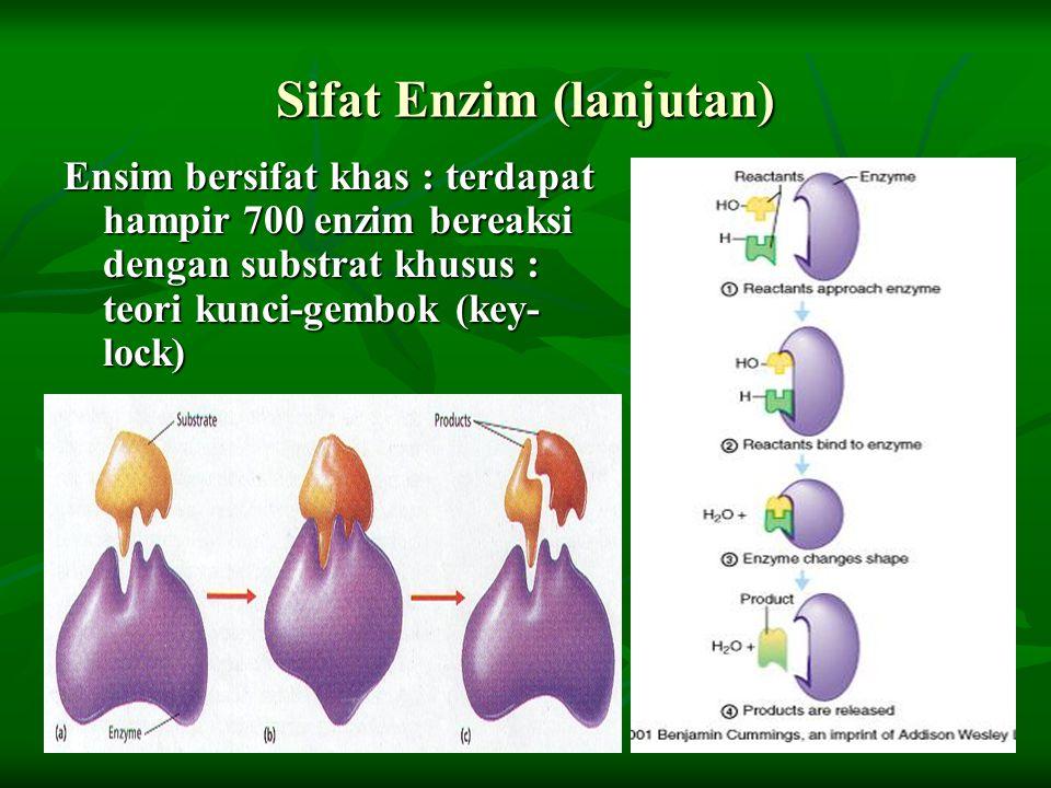 Sifat Enzim (lanjutan)