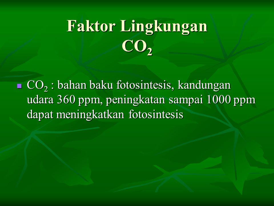 Faktor Lingkungan CO2 CO2 : bahan baku fotosintesis, kandungan udara 360 ppm, peningkatan sampai 1000 ppm dapat meningkatkan fotosintesis.