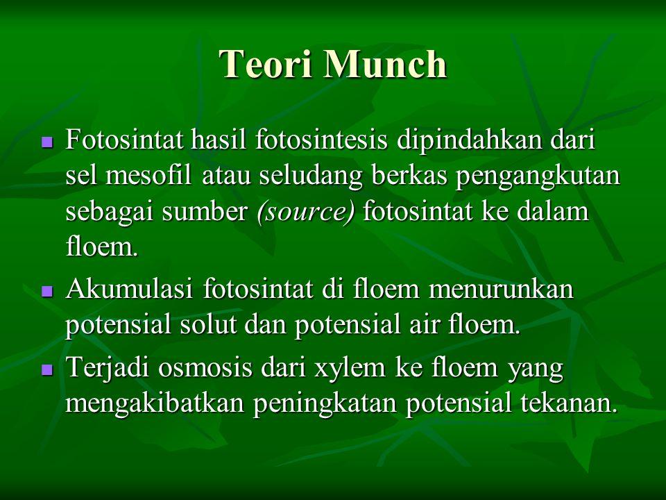 Teori Munch